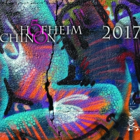 Weinetikett Hofheim-Chinon 2017