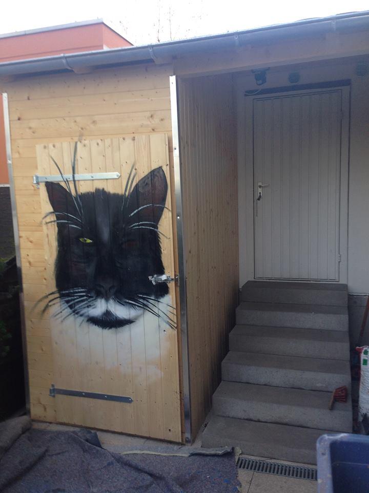 Katzen_Kayser-Kriftel2