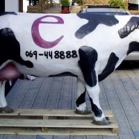 Kuh-v.-rechts2002