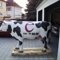 Eisenhardt_Kuh-web