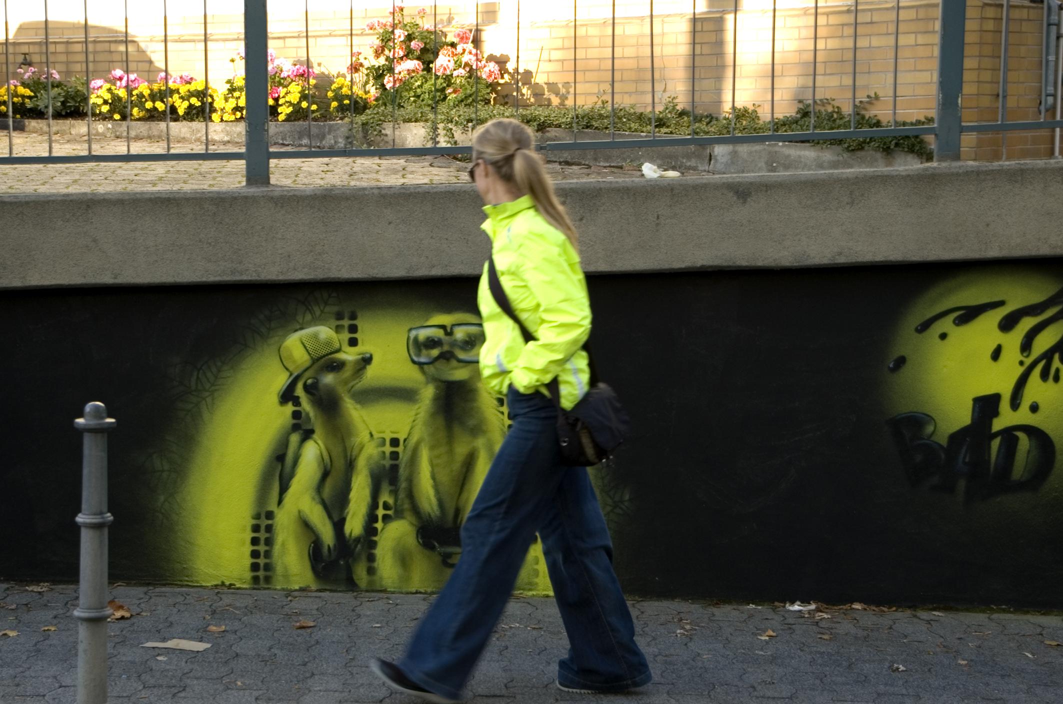 erdmaennchen2011