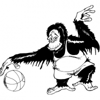 Affe Basketball 1999