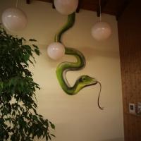 Snake_Schlange