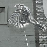 leunabunker-strahl_0