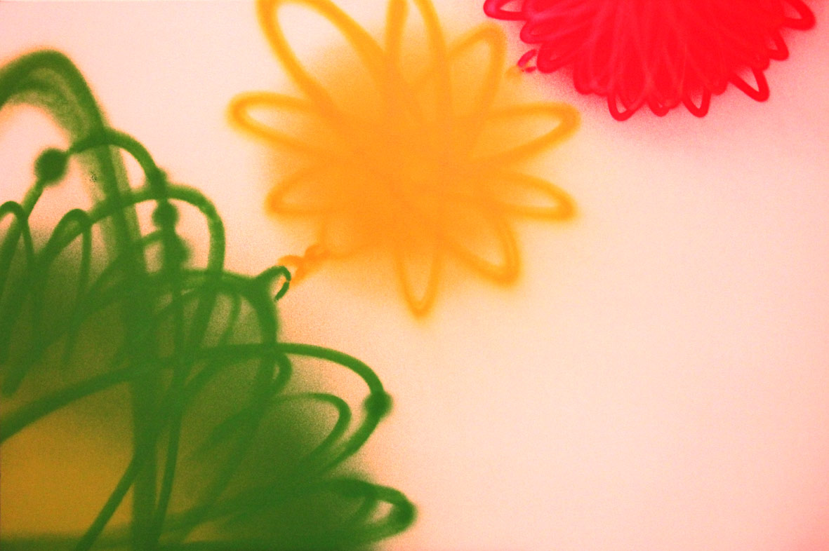 asp-flowers