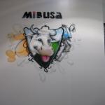 mibusa1