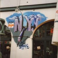 nyctypo