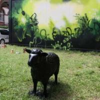schwarzes-schaf-black-sheep