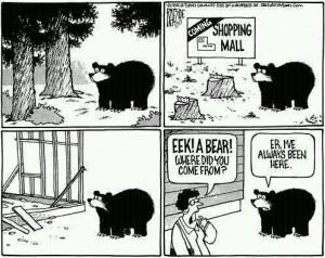 Eine geschickte Analogie: Graffiti-ähnlich dem Bär in dem Cartoon ist eine der ältesten Kommunikationsmittel des Menschen.