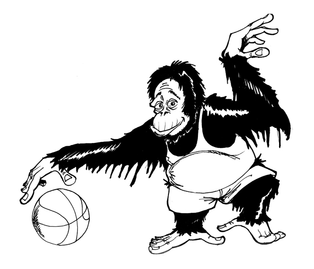 Affe Basketball 1999
